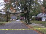 Tree damage on Oakwood Road.